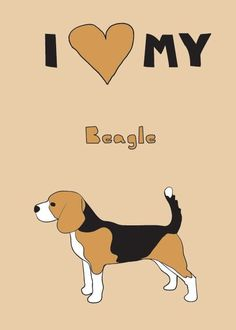 I love my beagle!
