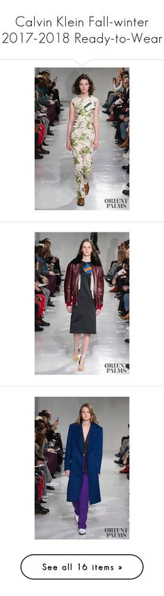 """""""Calvin Klein Fall-winter 2017-2018 Ready-to-Wear"""" by larinhacarter on Polyvore"""