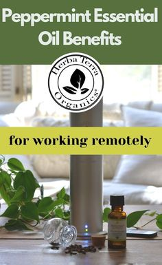 Essential oils like Peppermint can help to support mental clarity, productivity and alertness. This oil can also help you regain focus while working from home, or remote schooling. It's great for improving memory, learning retention, study, focus, and much more. Tap the Image for more info. #herbaterraorganics #organicoils #peppermintoil Helichrysum Essential Oil, Clary Sage Essential Oil, Frankincense Essential Oil, Lemongrass Essential Oil, Peppermint Essential Oil Benefits, Essential Oils For Memory, Aromatherapy Recipes, Organic Oil, Health Remedies