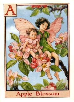 Flower Fairy Alphabet by Cicely Mary Barker CLICK PHOTOS FOR LARGER VIEWS From A Flower Fairy Alphabet by Cicely Mary Barker. LONDON: Blackie, 1934 | Flower Fairies Official Website. ♥ SHARE THIS POST ♥You might also likeThe Language of FlowersMy Heaven on EarthThe Year in Art - 2012Flowers Talk