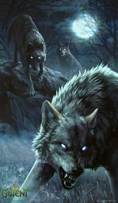 """Rabid Wolf - The Witcher 3 Wild Hunt / Gwent Card. """"Relax, I know how to tame wolves…""""– Dunbar the Hunter's last words. Anime Wolf, Wolf Tattoos, Art Tattoos, Wolf Spirit, Spirit Animal, Fantasy Kunst, Fantasy Art, Fantasy Creatures, Mythical Creatures"""