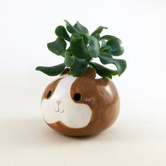 Guinea pig planter in brown and white.*wheek wheek!* Possibly the cutest pets on the planet, guinea pigs make your heart explode with their adorable squeaks and resemblance to walking toupees. I hand make these pots from Earthenware clay, paint them with coloured pigments and a beautiful glossy glaze then fire them in a tiny kiln at my home studio.Send me a message if you would like a different colour.PACKAGING --- All of my pieces are carefully packaged for safety.Please see my shop for…
