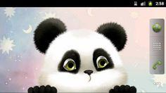 Top Android Panda Chub Live Wallpaper Free – Panda Chub Live Wallpaper Free Free Download