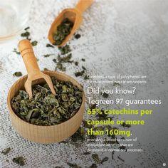 Green Tea Plant, Green Tea Detox, Detox Tea, Green Tea Uses, Green Tea Supplements, Green Tea Mochi, Green Tea Drinks, Green Tea Recipes, Green Tea Benefits