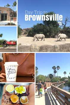 Day Trip To Brownsville Texas RGV With The Family
