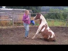 Das Circling Game nach Parelli at Liberty & Zirkus. Watch V, Liberty, Horses, Inspiration, Games, Animals, Biblical Inspiration, Animales, Political Freedom