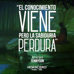 """""""El conocimiento viene, pero la sabiduría perdura"""" Alfred Lord Tennyson #Frases #FraseDelDía #Citas"""