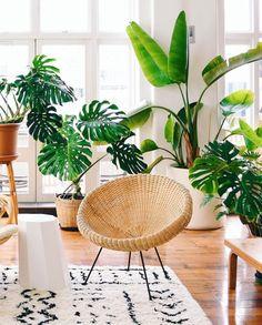 64 plant stand design ideas for indoor houseplants 13 - coodecors Bedroom Plants, Bedroom Decor, Plant Rooms, Decoration Plante, House Plants Decor, Plants For Home, Plants For Living Room, Living Room Goals, Monstera Deliciosa