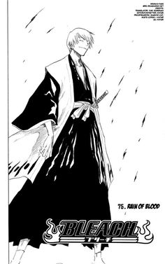 Bleach 75: Rain of Blood at MangaFox.me
