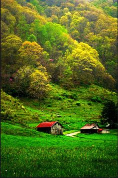 Appalachia. I want to go (and learn, in all seriousness, to sing folk music, and play banjo and mandolin).