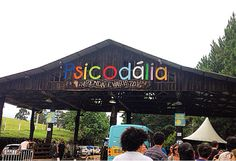 Psicodalia 2025 - carnival festival