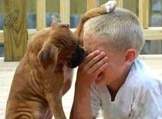 Não chore ,eu estou aqui.°°°TanDenoni°°