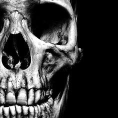 realistic, again only one side of the skull visable