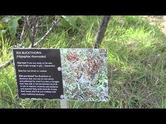 ▶ Springridge Learning - YouTube by Matthew Kemshaw uploaded October 2011.