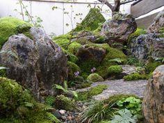 Schöpfungsbeispiel-Echigo Fumitake Co. Small Japanese Garden, Japanese Garden Design, Japanese Gardens, Moss Garden, Bonsai Garden, Rock Garden Design, Japan Garden, Garden Waterfall, Meditation Garden
