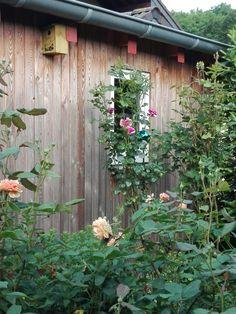 Meine Garten Schuppen