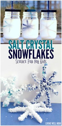 A simple STEM activity, kids love making salt crystal snowflakes and transforming ordinary pipe cleaners into pretty snowflakes!