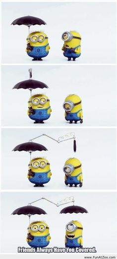 I just love those cute minions - Funny Picture