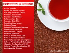Rooibus tea is a well known herbal tea, popular all round the world. Its Caffeine free, safe and sweet. Know more about benefits of Rooibos Tea! Tea Benefits, Health Benefits, Health Tips, Health Facts, Healthy Drinks, Healthy Eating, Clean Eating, Natural Beauty Recipes, Best Fruits