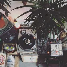 Brazilian collector Palo Santo has built a tropical music paradise in Holland, featuring the best samba, reggae and jazz from around the world. Vinyl Music, Dj Music, Music Albums, Music Aesthetic, Retro Aesthetic, Character Aesthetic, Vinyl Junkies, House On The Rock, Spotify Playlist