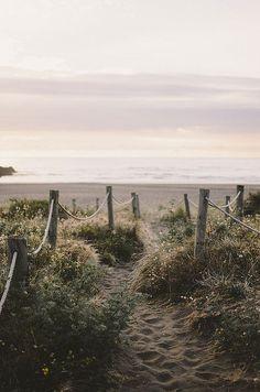 photo scenery Piha Beach, New Zealand Love Photography, Landscape Photography, Travel Photography, Aerial Photography, Landscape Photos, Portrait Photography, Wedding Photography, Places To Travel, Places To Visit