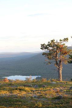 Suomen Lappi, Levitunturi.