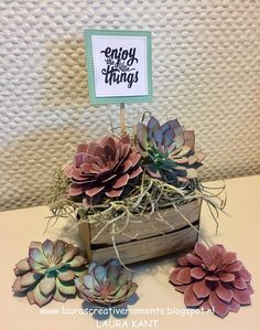 the little things . Succulent Garden Suite, Stampin' Up! - Enjoy the little things -Succulent Garden Suite, Stampin' Up! - Enjoy the little things - Paper Succulents, Succulents Garden, Succulent Planters, Hanging Planters, Flower Cards, Paper Flowers, Big Flowers, Card In A Box, 3d Paper Crafts