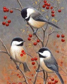 Art | Bird Illustration | Chickadees