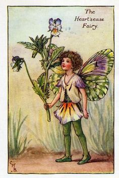 Heart'sease Flower Fairy Vintage Print, Cicely Mary Barker « The ...