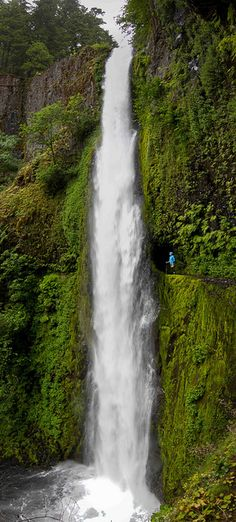 Tunnel Falls, Columbia River Gorge, OR Can't wait to see this in person! Columbia River Gorge, Places To Travel, Places To See, Voyage Usa, Oregon Vacation, Oregon Waterfalls, Oregon Trail, Oregon Usa, All Nature
