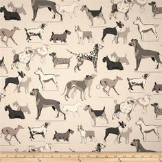 Dog Theme Fabric On Pinterest Premier Prints Valance