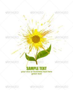 Sunflower against white background. Concept of the abstract splash flower. Contains: 1 editable vector EPS 1 render JPG Infographi