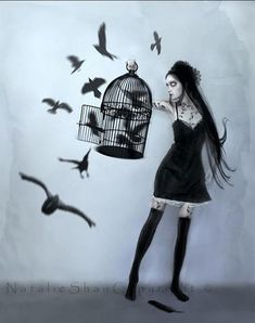 Natalie Shau. Love this one, reminds me of when I accidentally let my moms birds go.. Accidentally knocked the cage over.zz