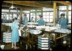 Skeins of silk made into twists  Enami Studio Lantern Slide No : 662