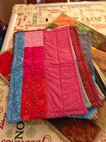 Doris B. made Kennel Quilts.