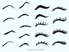 Eyebrows and Eyelashes Free vector