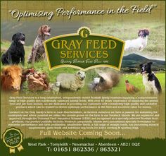 Sponsor: Grey Feed Services
