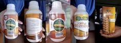 Agen QnC Jelly Gamat Indonesia