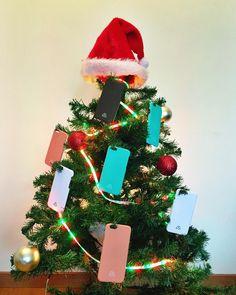 Feliz Navidad des de Mediterrans!!!  www.mediterrans.com