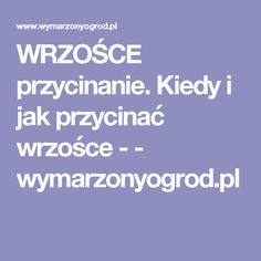 WRZOŚCE przycinanie. Kiedy i jak przycinać wrzośce - - wymarzonyogrod.pl