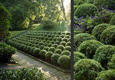 Pennsylvania garden by Hess Landscape Architects. Photo by Andre Baranowski Photography.