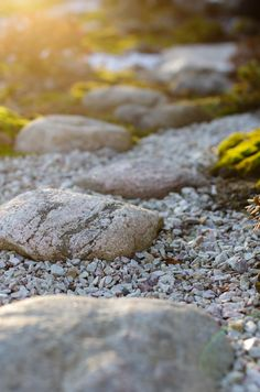 Jessican japanilainen puutarha osa II | Nordic Atmosphere