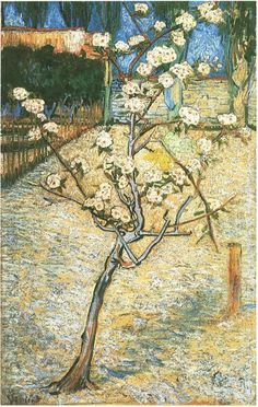 Vincent van Gogh Blossoming Pear Tree Painting