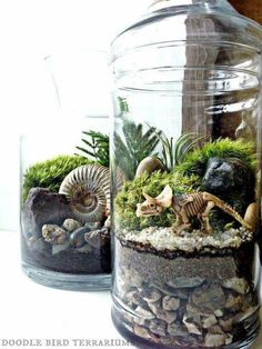 """Dinosaur terrarium, yes please. From the page: """"Dinosaur fossil terrarium jar features layers of soil, stone, and live moss making up a miniature prehistoric landscape."""