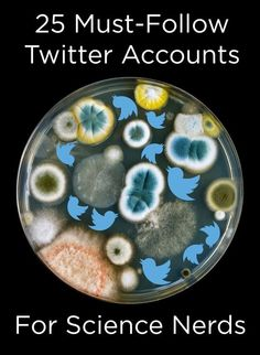 25 Must-Follow Twitter Accounts For Science Nerds