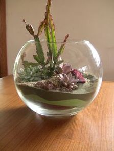 So interesting to see sand art incorporated in a terrarium!