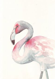 Flamingo ART - bird - Archival print of watercolor painting 5 by 7
