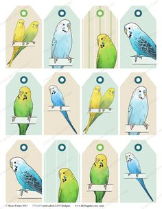 Printable budgie themed labels - great for using in scrapbooks, cardmaking, gift tags and more!  £3 from hfcSupplies Etsy