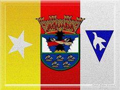 Bandera y Escudo de Aguada(mi vercion) 6/feb/2010[por Robert Caban Durand]