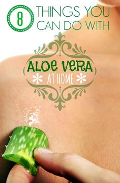 8 THINGS YOU CAN DO WITH ALOE VERA AT HOME | Healthamania